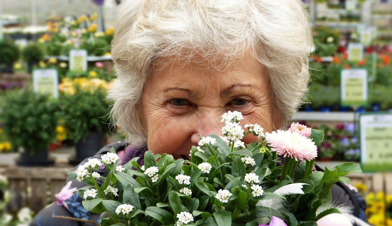 Elder woman Image by silviarita from Pixabay